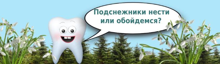 зуб в лесу